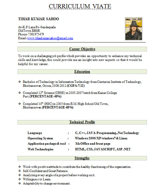 Resume format pdf download for freshers