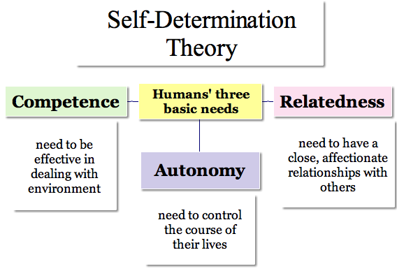 What is self determination theory pdf