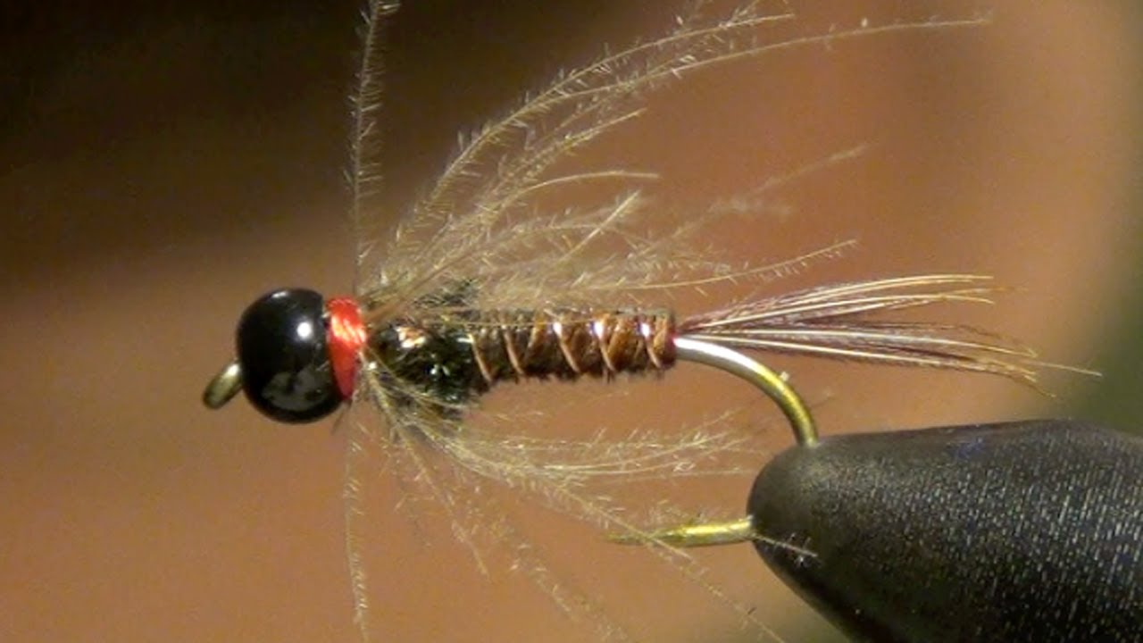 pheasant tail nymph tying instructions