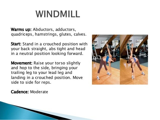 back muscle dynamic warm up instruction